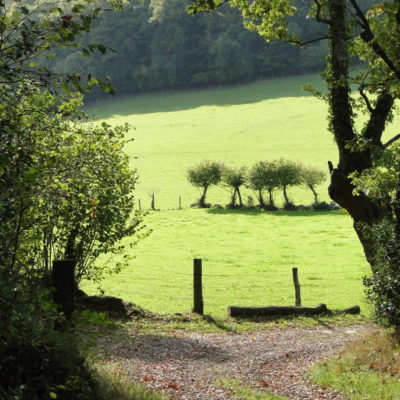 Magnificent walks in stunning countryside just a stone's throw from La Vieille Longère