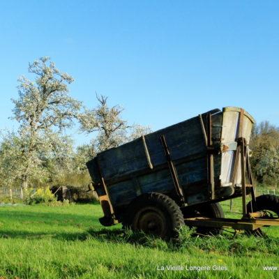 Ancien chariot de pommes